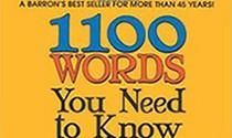 کدینگ زبان ۱۱۰۰